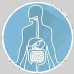 Intestins microbiote intestinal