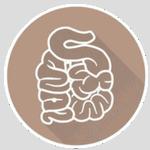 tourista probiotiques
