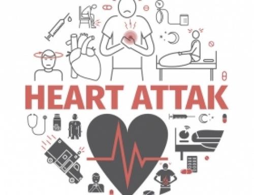 Probiotiques : au cœur d'études sur les maladies cardiovasculaires