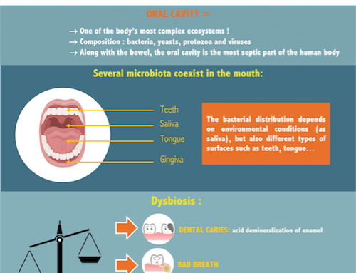 INFOGRAPHIC ABOUT ORAL SPHERE – HOW DO PROBIOTICS ACT ON MOUTH INFECTIONS ?