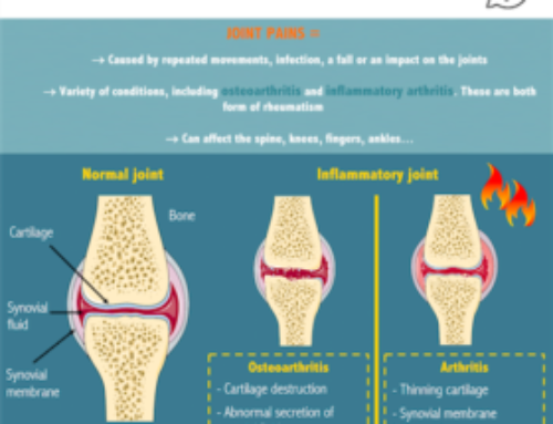 Infographic about joints – How do probiotics act on inflammatory joints ?