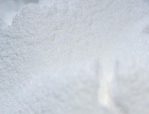 Titanium dioxide, enemy of the intestinal microbiota?