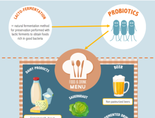 INFOGRAPHIC ABOUT SOURCES OF PROBIOTICS – WHERE TO FIND PROBIOTICS IN OUR FOOD?
