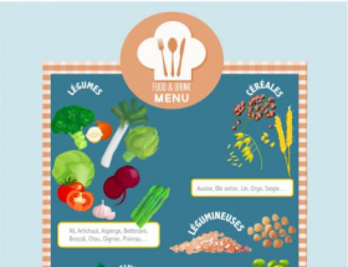 Infographie – Où trouver des prébiotiques dans notre alimentation ?
